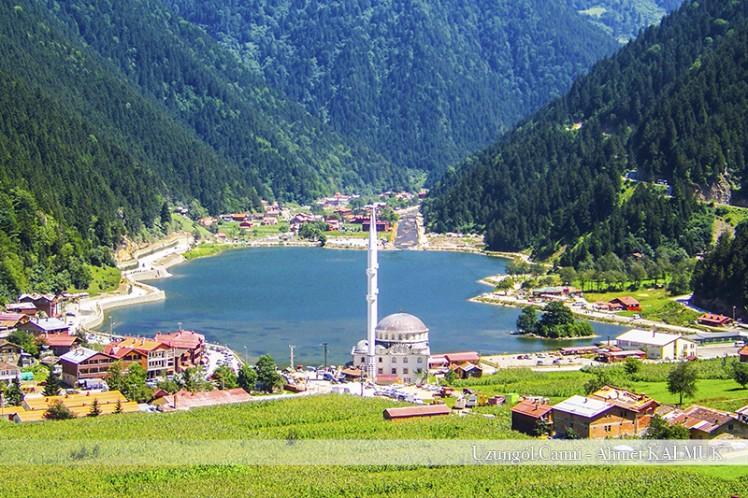 Ekonomik Doğu Karadeniz Ve Yaylalar Turu